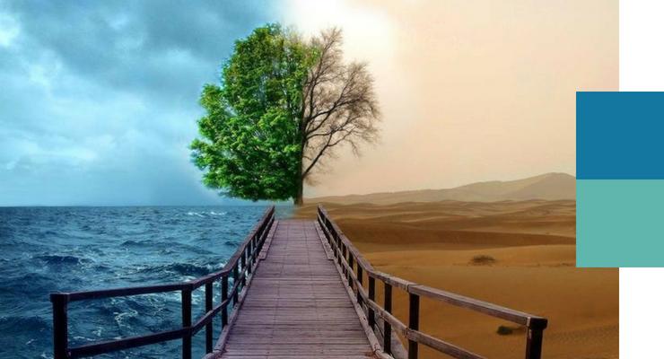 Disegna il tuo percorso esistenziale: vuoi sopravvivere o prosperare?